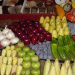 LA VETRINA ONLINE PER AGROALIMENTARE MADE IN ITALY