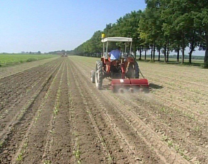 ALL'AGRICOLTURA SERVONO MACCHINE E COMPONENTISTICA