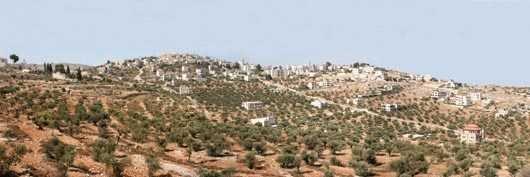 UNA ETICHETTA PER I PRODOTTI DEI TERRITORI OCCUPATI DA ISRAELE