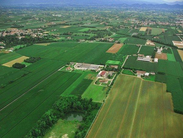 L'AGROALIMENTARE ITALIANO È LEADER IN TUTT'EUROPA