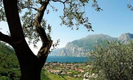 LE ALTERAZIONI CLIMATICHE HANNO CAMBIATO LA GEOGRAFIA AGRICOLA ITALIANA
