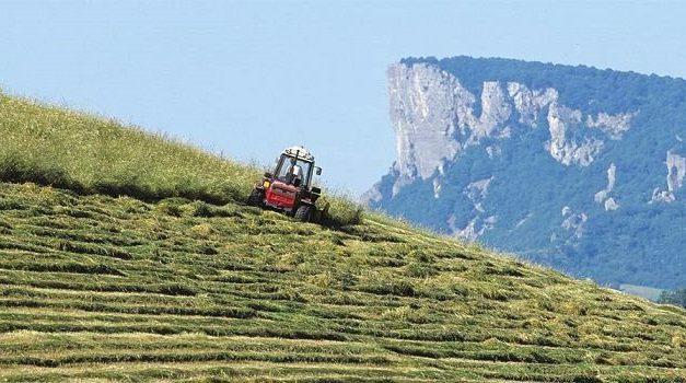 L'AGRICOLTURA DI MONTAGNA PER COMBATTERE IL DISSESTO IDROGEOLOGICO