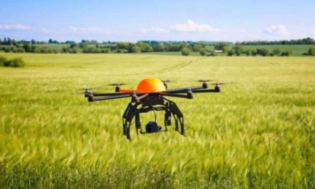 IL FUTURO DELL'AGROALIMENTARE È NELLE TECNOLOGIE INFORMATICHE