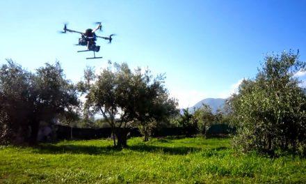 È DIFFICILE FARE UNA START UP IN ITALIA: EPPURE NELL'AGROALIMENTARE …