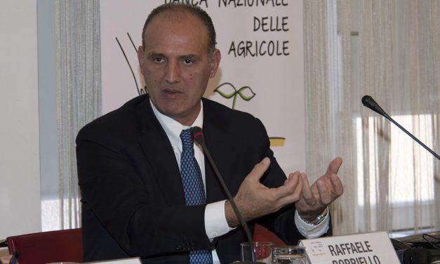 L'AGRICOLTURA DI PRECISIONE, GRAZIE AL WEB, ALLA PORTATA DI TUTTE LE AZIENDE