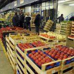 L'AGRICOLTURA VENETA SI CONFRONTA SUL DOPO-VIRUS